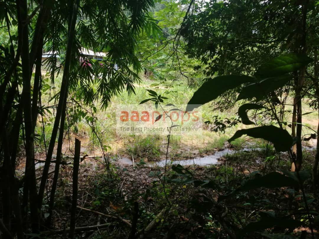 Tanah pertanian @ batu 20 Kg Sg Lui Hulu Langat
